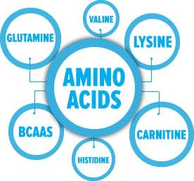 how to choose amino acid supplements