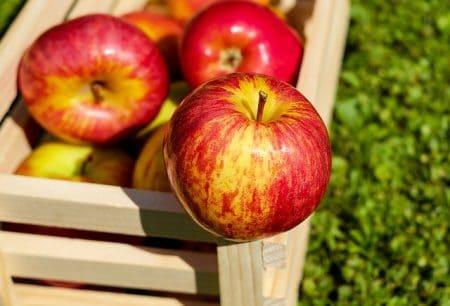 things it's best to buy Organic