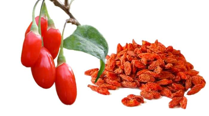 goji berry health benefits