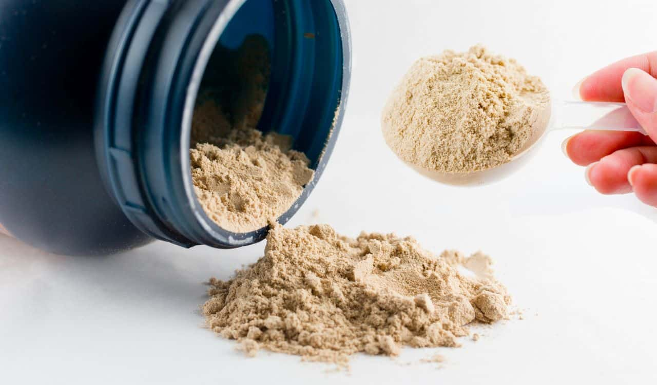 Chocolate Powder For Gaining Muscle