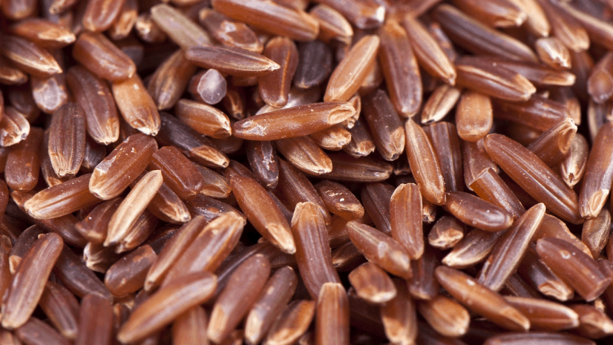 red yeast rice for cholesterol