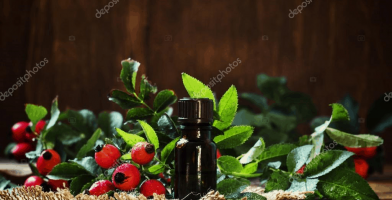 Find the right rosehip oil for your skin