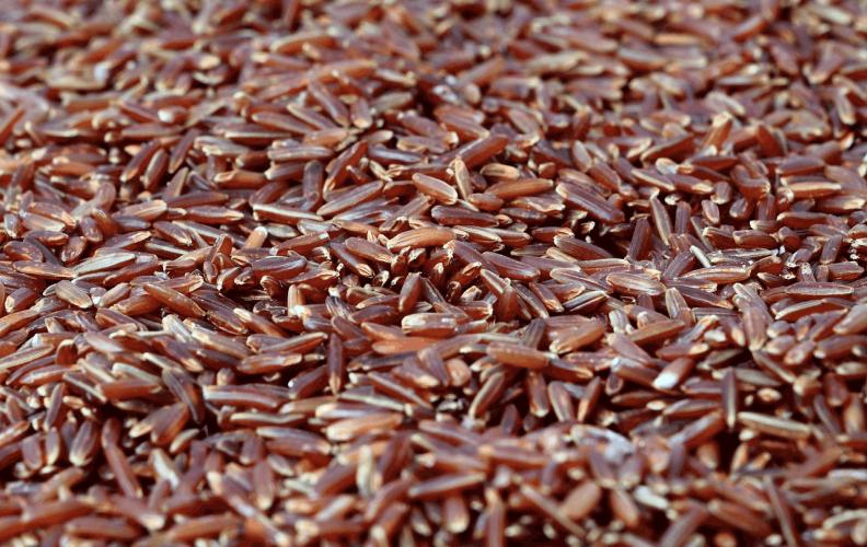 red yeast rice benefits