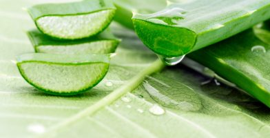 the main benefits of using  Aloe Vera and a careful comparison of the best brands on the market