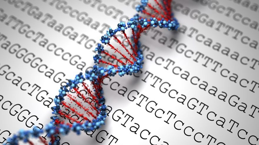how is genetic testing done