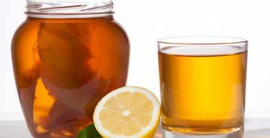 we reviewed the 10 best kombucha teas