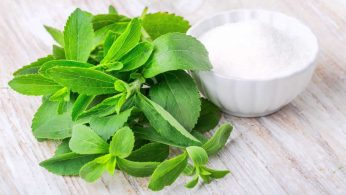 we reviewed the best stevia products on the market