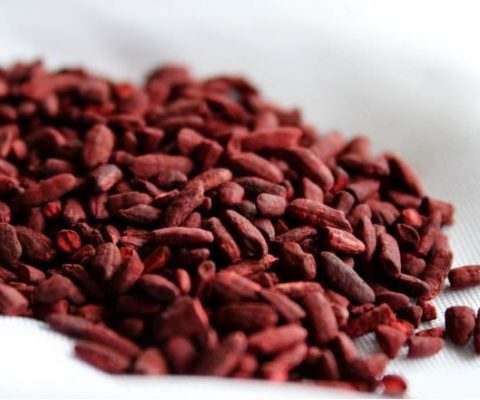 Red Yeast Rice and reviews of the top brands